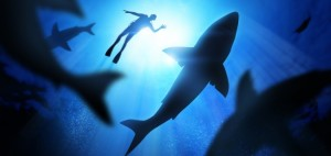 What Appearing on Shark Tank Taught Me About My Business