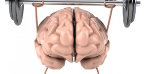 4 Easy Ways to Optimized Your Brain's Performance