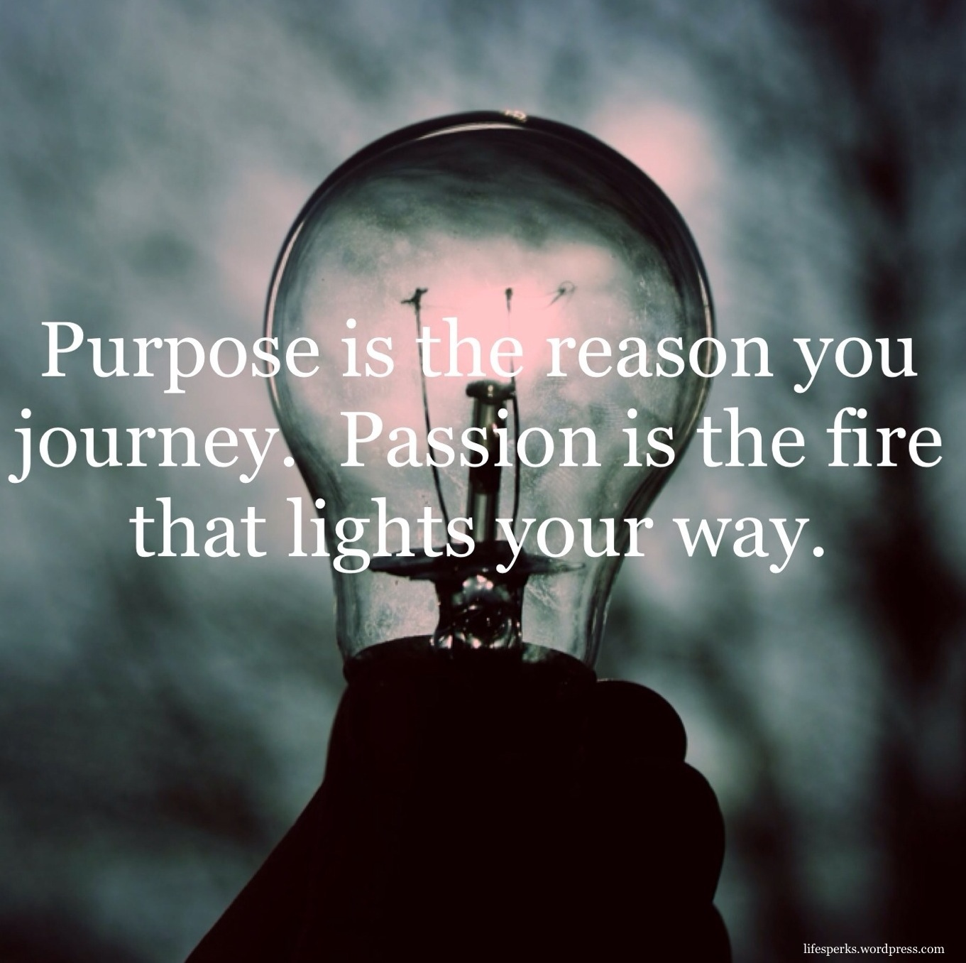 purpose-and-passion-